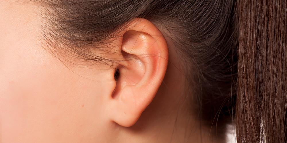 Navigeren dankzij kanaaltjes in oor