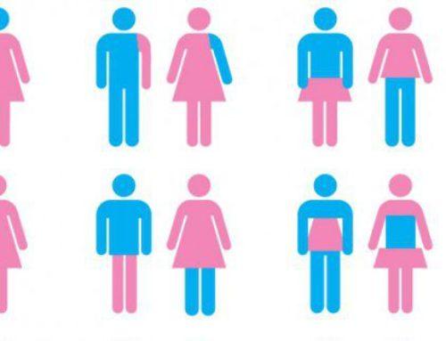 Transgender zijn – verslag